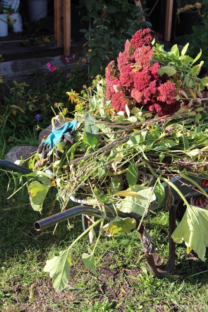 Gartenimpression: Schnittgut im Herbst