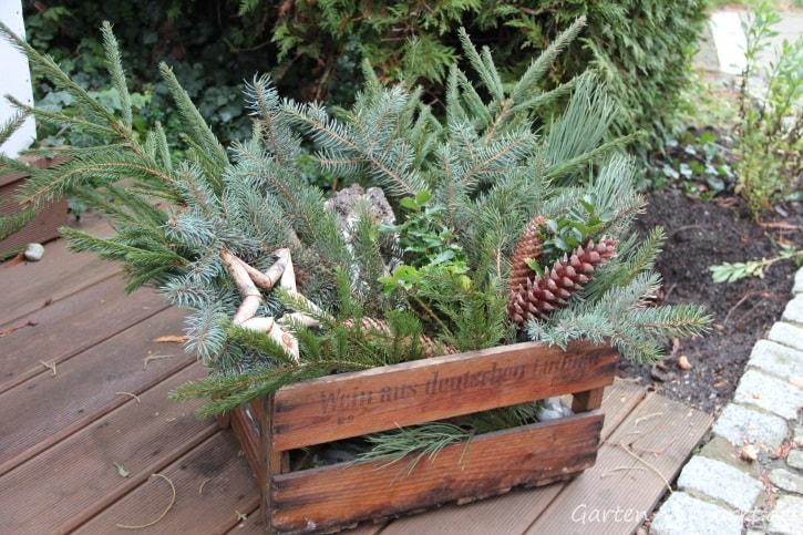Eine Holzkiste gefüllt mit Tanne, Zapfen und Baumrinde