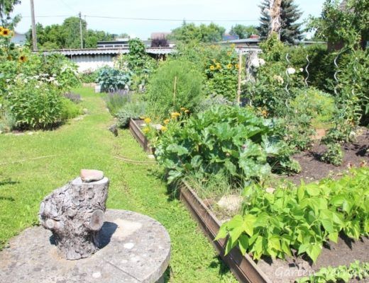Das Gartenjahr 2017 in Bildern